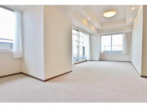 スカイシティ豊洲 - 2205マンション